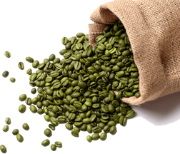 GREEN COFFEE BEAN EXTRACT in Ketstax